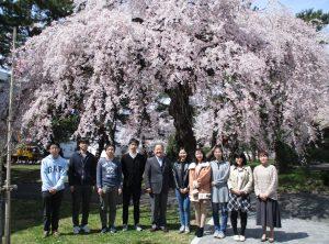 桜の下にて1