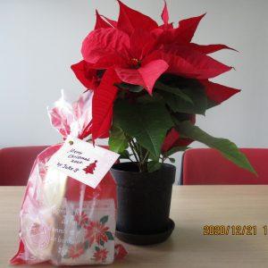 酒井先生からクリスマスプレゼント☆彡